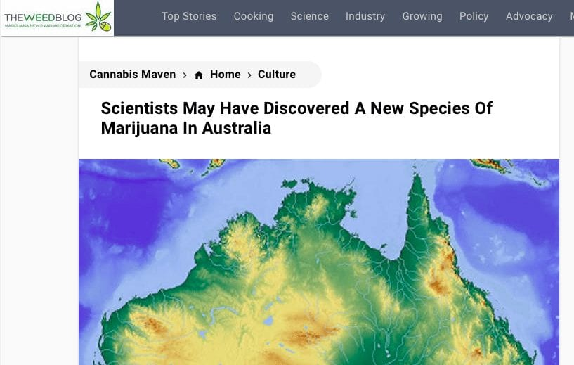 Blog article heading about a new species of marijuana in Australia