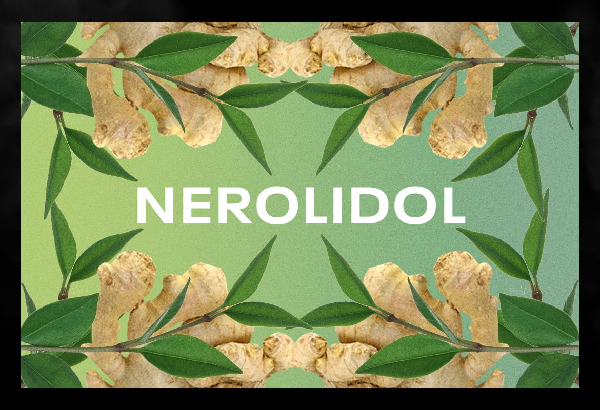 NEROLIDOL BEST TERPENES ONLINE FOR WEED