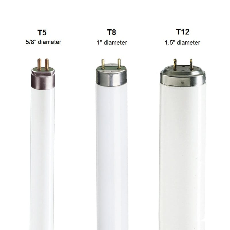 T8T5-T8-T12 light bulbs