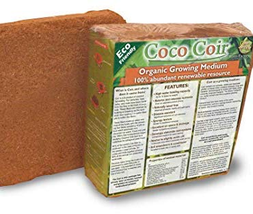 coco coir media or soil
