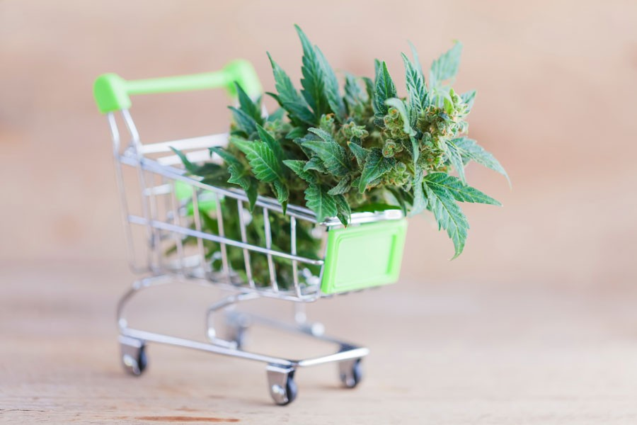 shopping cart with cannabis in it