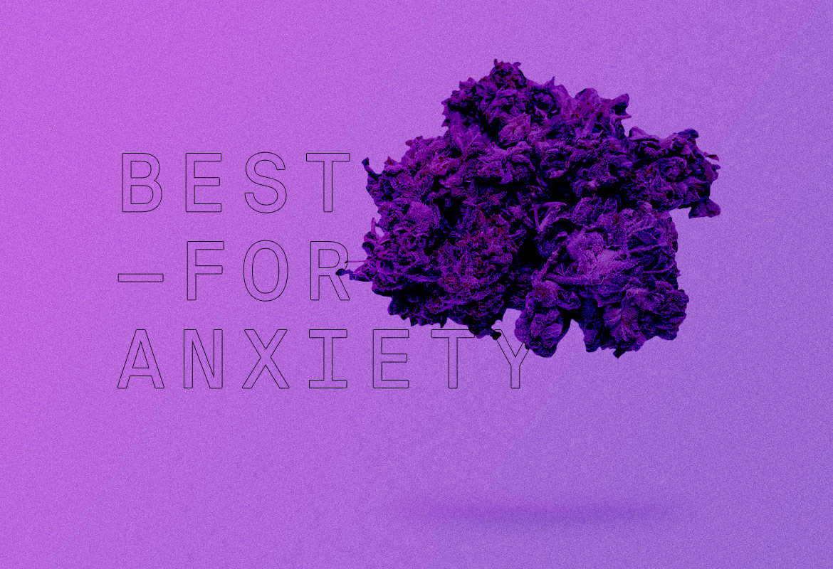 Best Indica strains of all time FOR ANXIETY