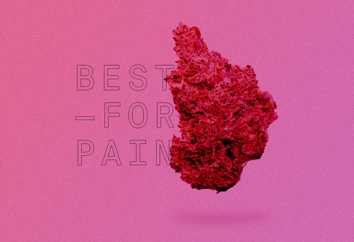 Best Indica strains of all time FOR PAIN