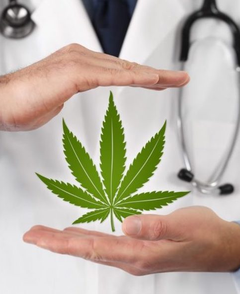 weed leaf and doctors hands