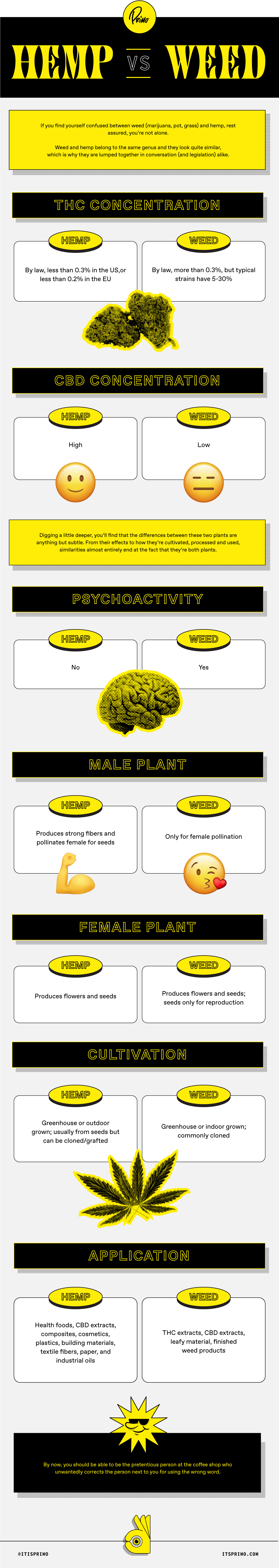 Weed and Hemp Infographic